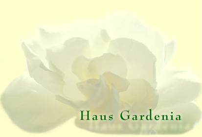 Algarve Ferienhaus Casa Gardenia für 2 Personen, in Cabanas de Tavira an der Algarve in Portugal