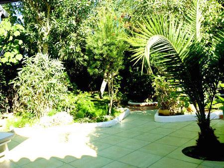Ausblick vom Wohnzimmer & Terrasse