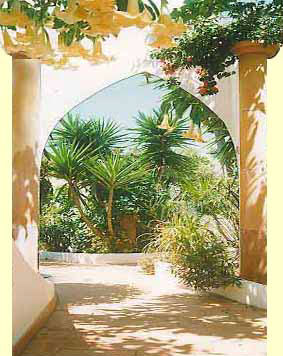 Herzlich Willkommen zu Ihrem Ferienhaus Casa Aloé, Casa Quintal, Casa da Grelha & dem Ferienhaus Casa da Oliveira direkt am Meer & Sand-Strand in der OÁSIS - VERDE in Cabanas de Tavira - Algarve - Portugal